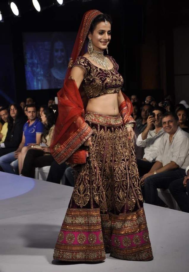 Ameesha Patel Beautiful Rampwalk Images