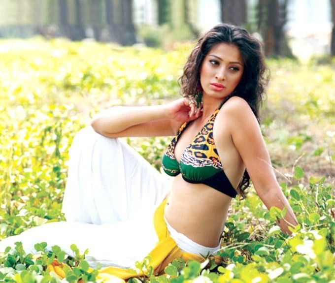 Raai Laxmi Hot Navel & Boobs Images