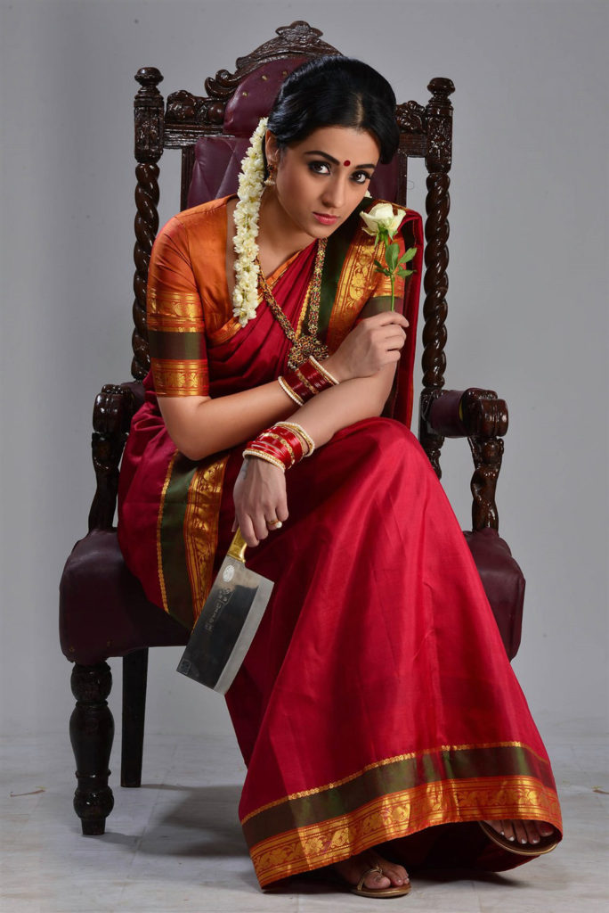 Trisha Krishnan Hot Look In Saree Photos HD