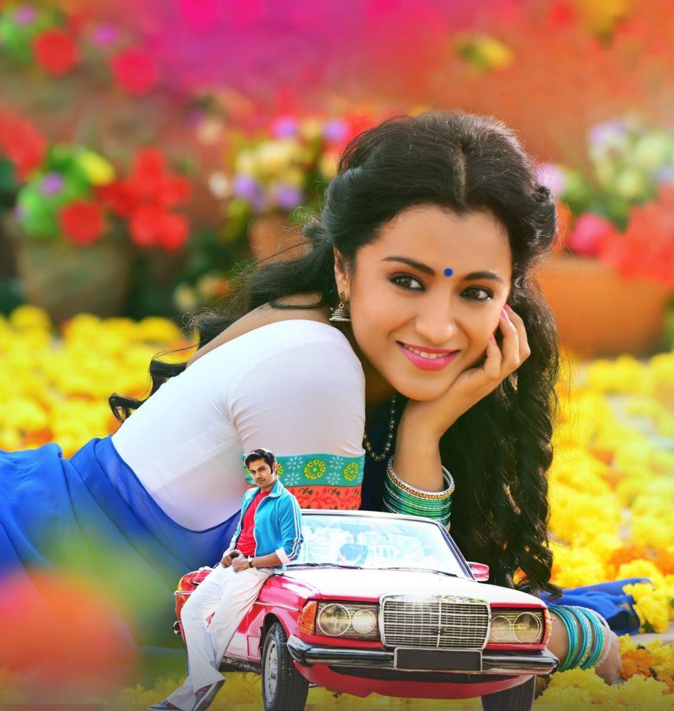 Trisha Krishnan In Saree Images