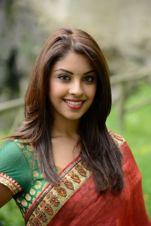 Richa Gangopadhyay Beautiful Pictures In Saree