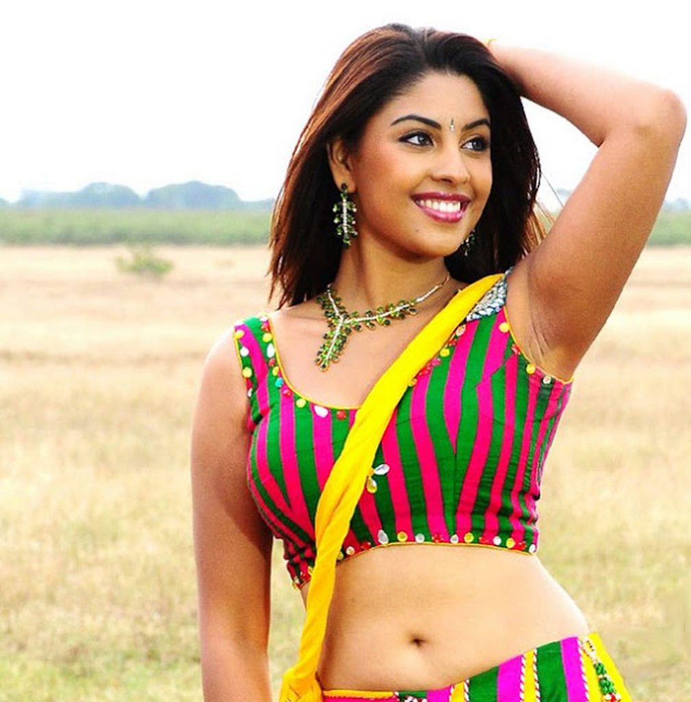 Richa Gangopadhyay Hot Navel Photos