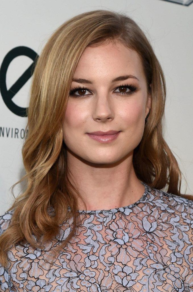 Gorgeous Emily VanCamp Images