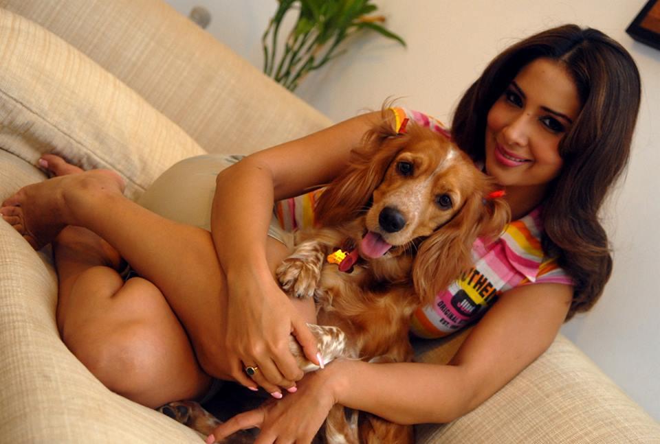 Bollywood Actress Kim Sharma Pics