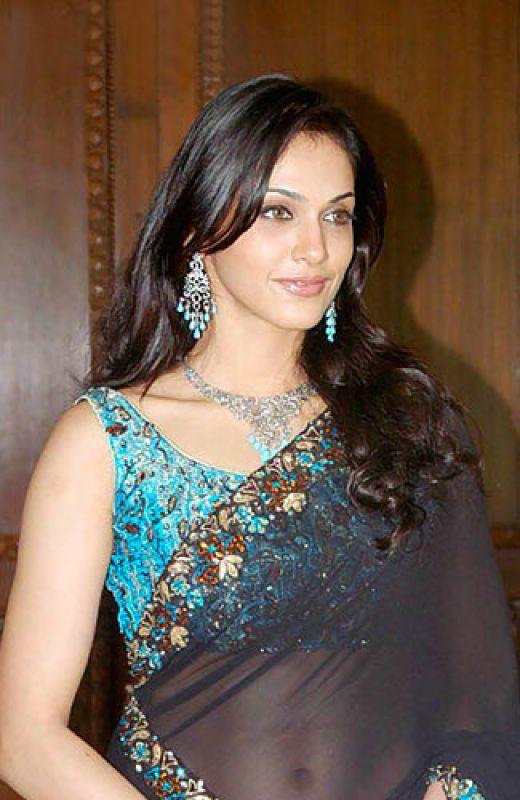 Isha Koppikar Hot In Saree Pictures