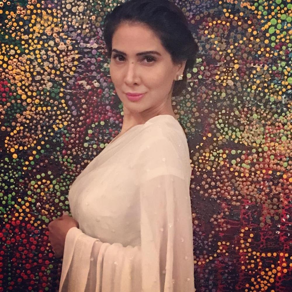 Kim Sharma Beautiful Images In Saree
