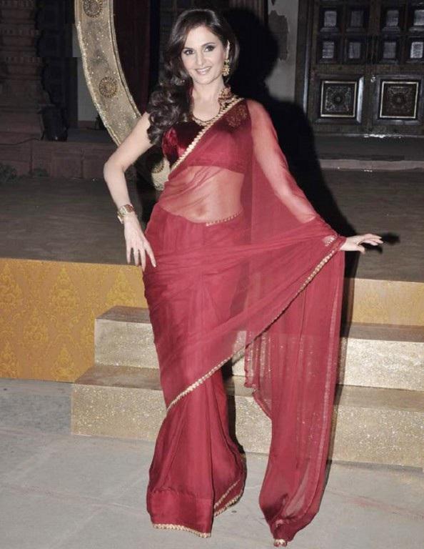 Monica Bedi Images In Saree