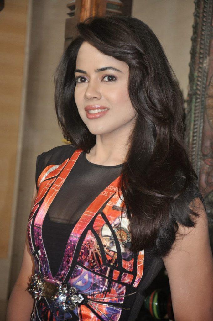 Sameera Reddy Sexy & Hot Pics
