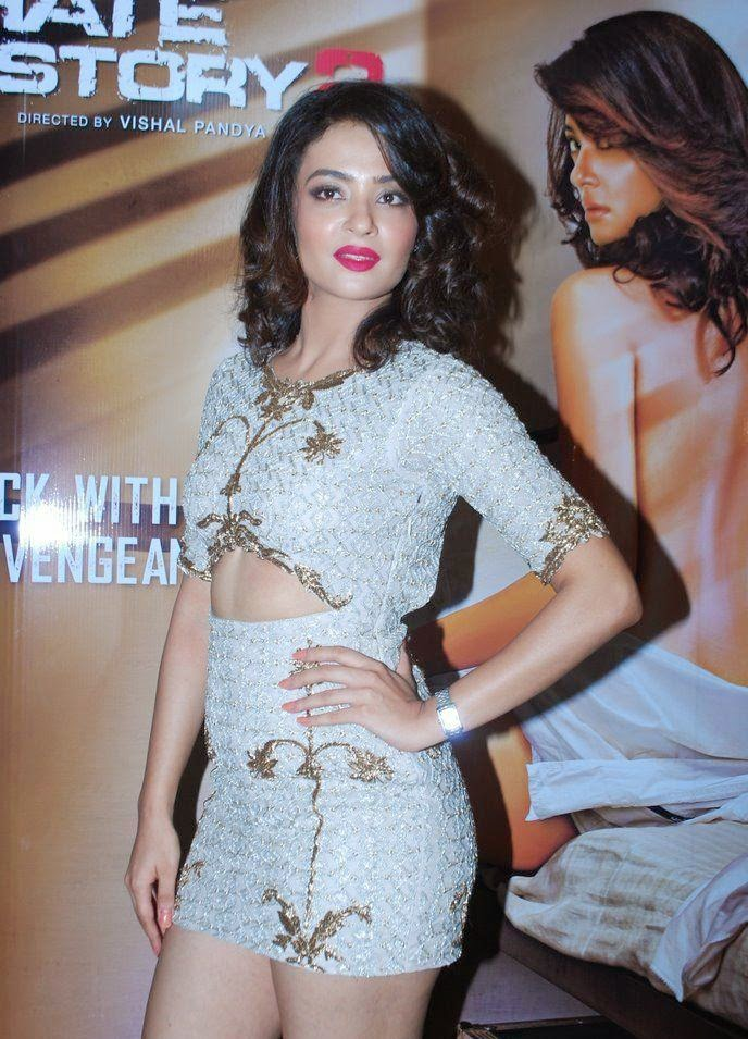 Surveen Chawla Hot In Short Clothes Pics