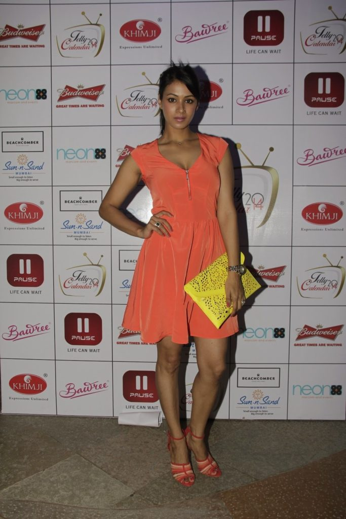 Barkha Bisht Sexy Legs Pics In Shorts