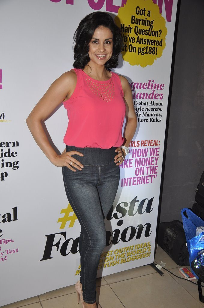 Gul Panag Hot In Jeans Top Wallpapers