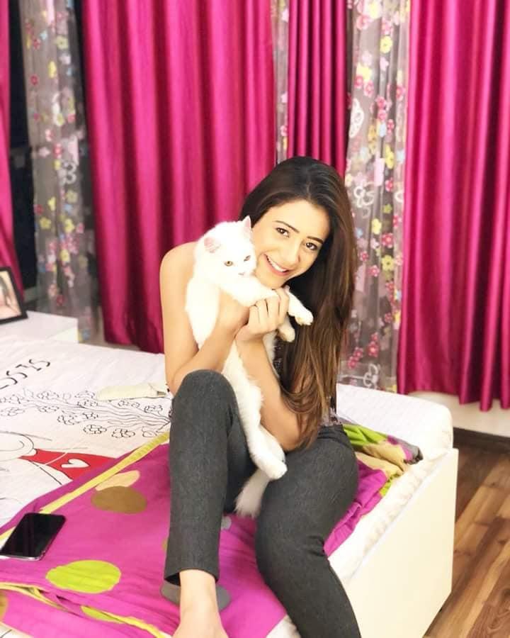 Hiba Nawab Hot Images With Cat