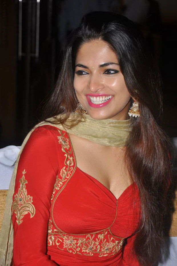 Parvathy Omanakuttan Pictures Full HD