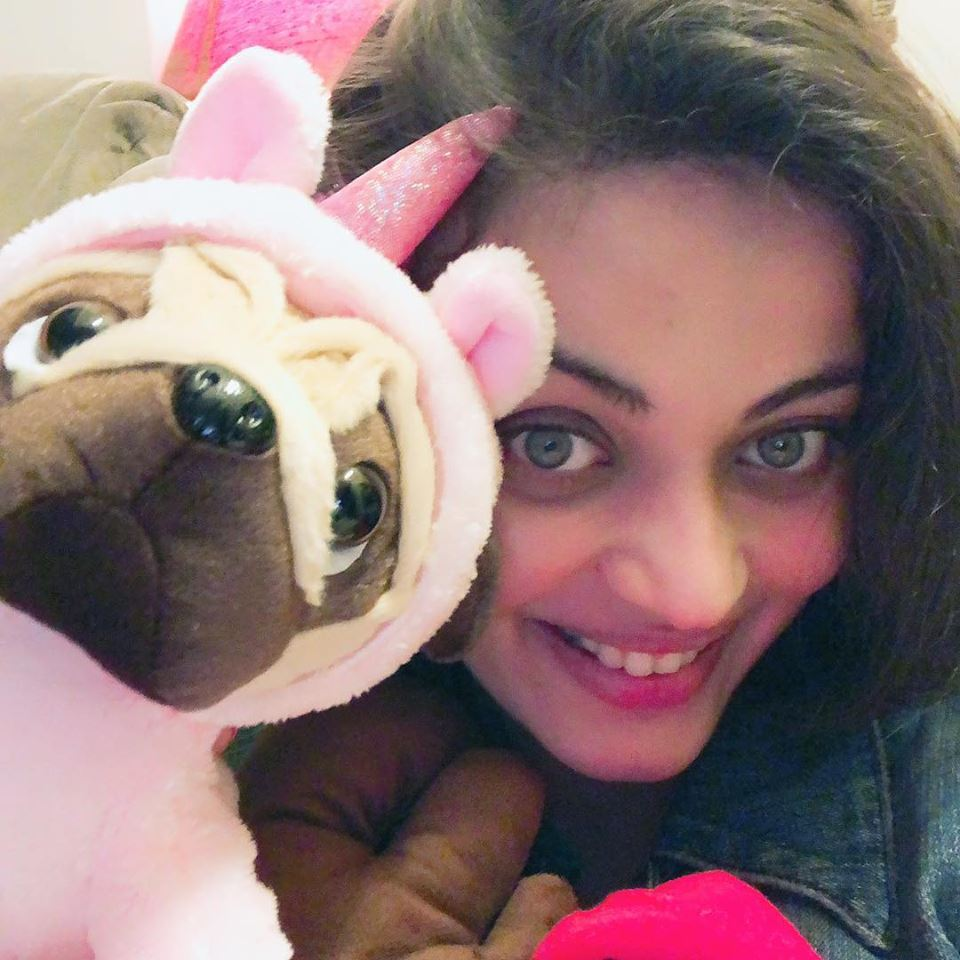 Sneha Ullal Lovely Wallpapers Download