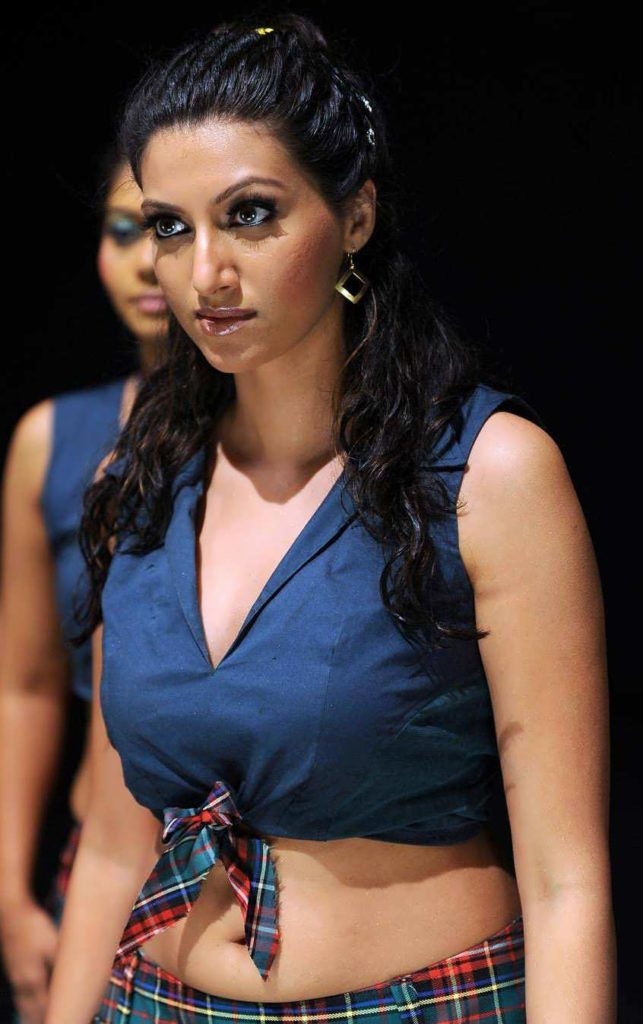 Hamsa Nandini Spicy Navel Images