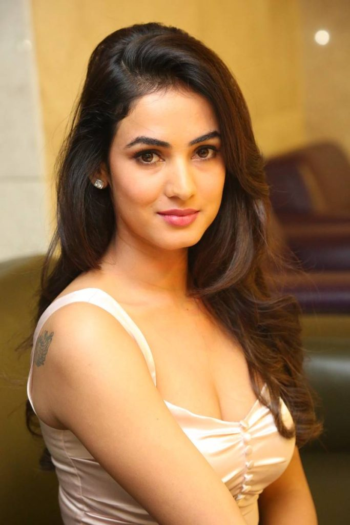 Bold Sonal Chauhan Attractive Pics