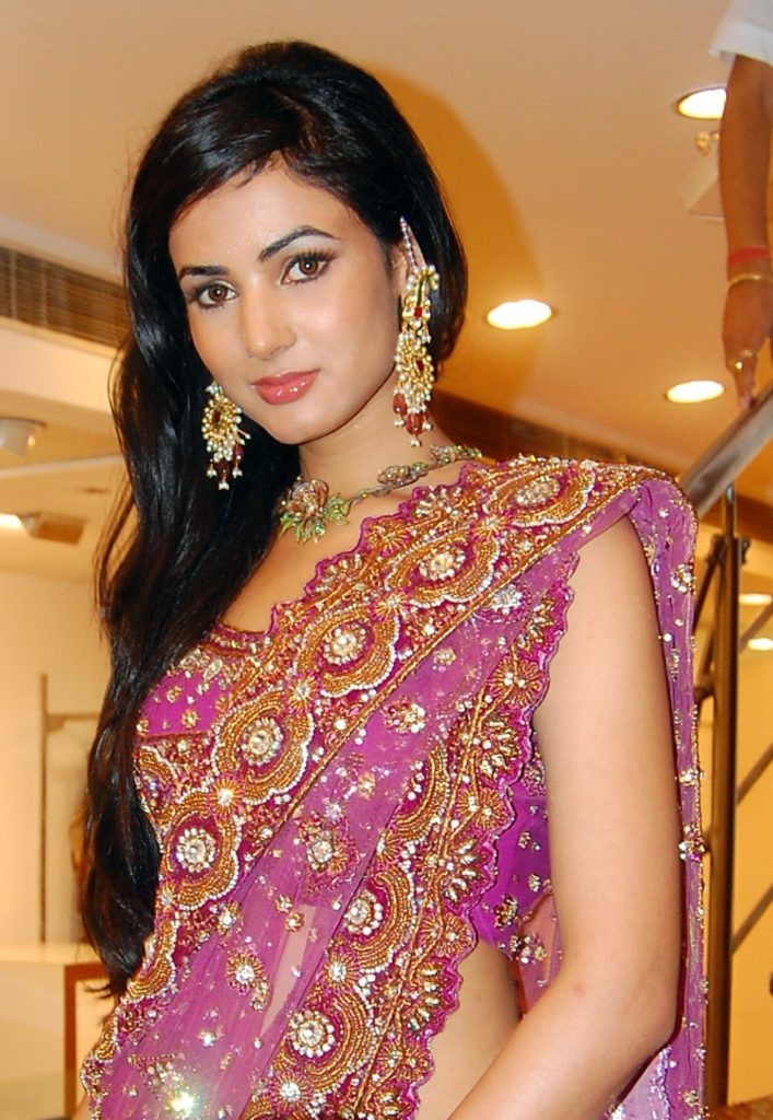 Bollywood Actress Sonal Chauhan Pics In Saree