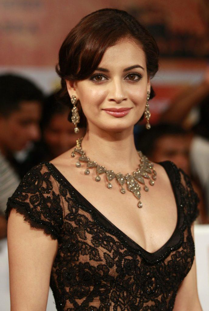 Dia Mirza Beautiful & Sweet Images At Award Show