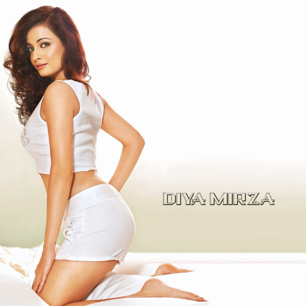 Dia Mirza Charming & Attractive Images In Bra Panty