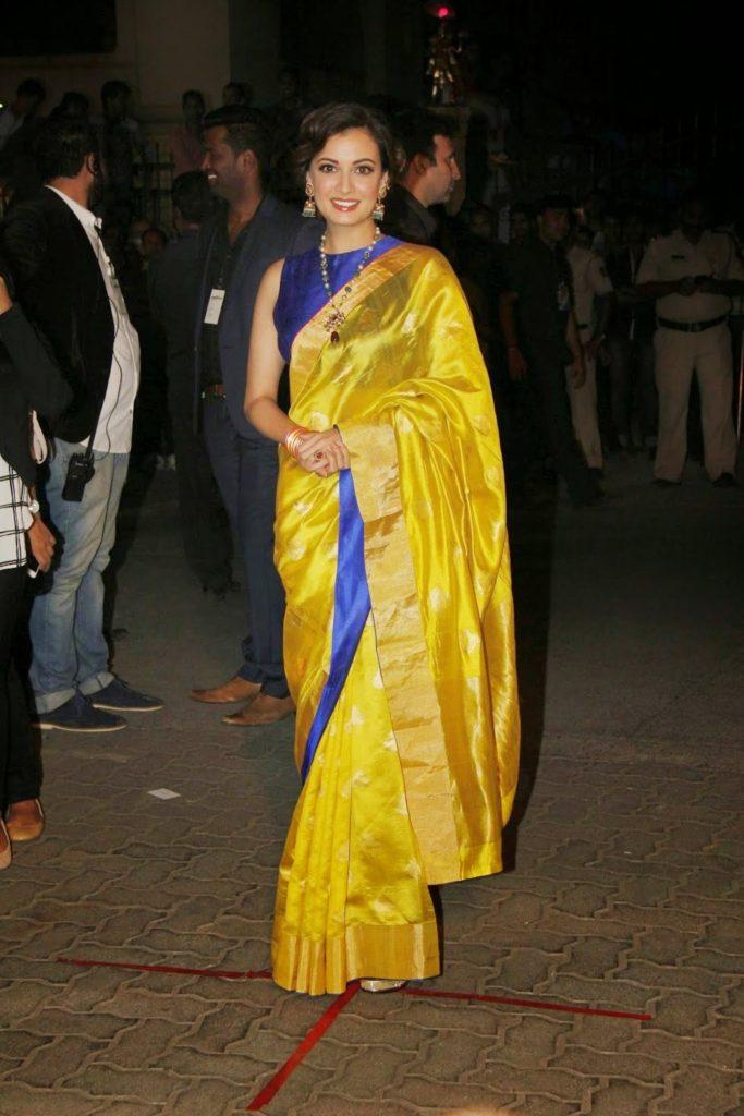 Dia Mirza Hot Images In Saree