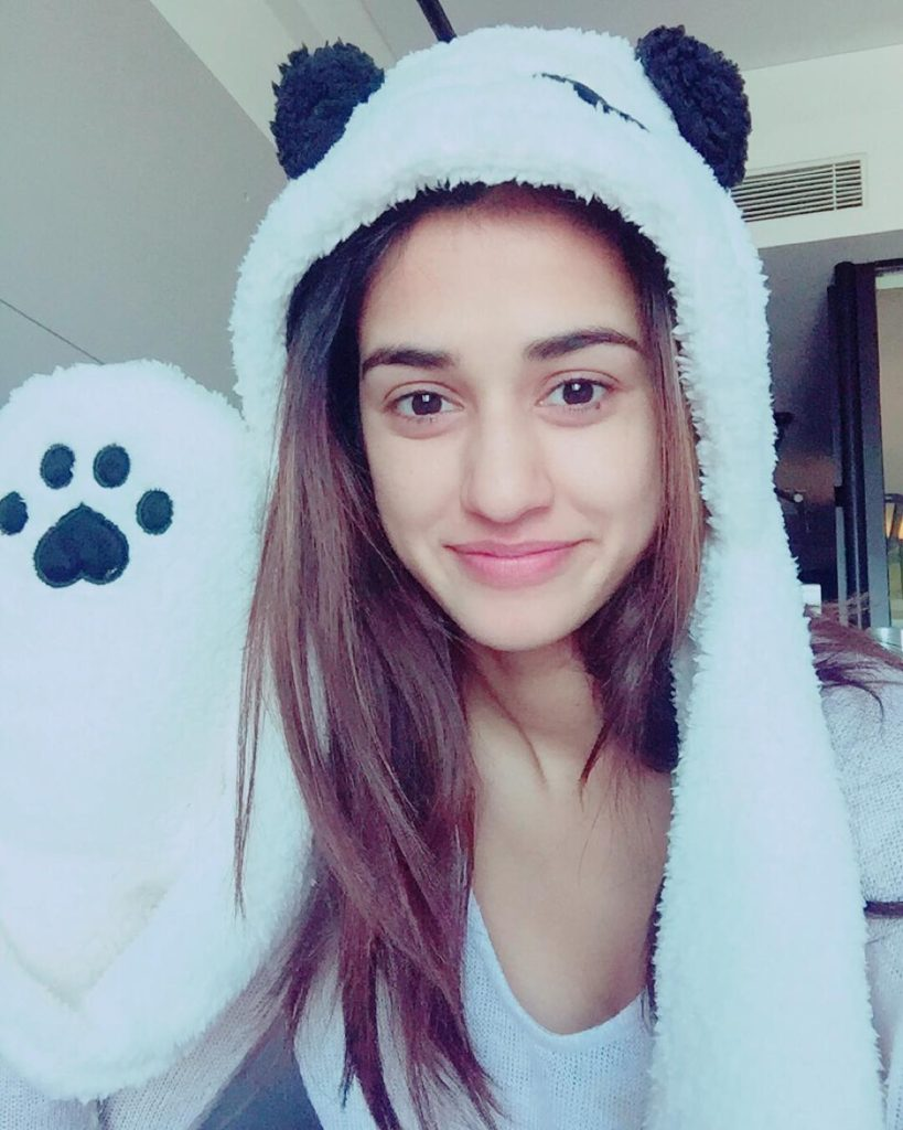 Disha Patani Sweet Pictures