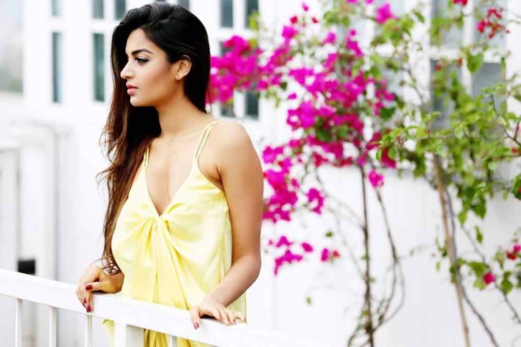 Nidhhi Agerwal Beautiful Images