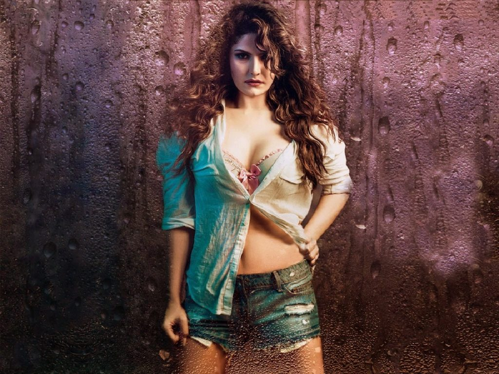 Zarine Khan Bold Images In Bra Panty