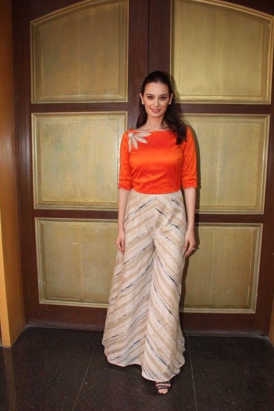 Evelyn sharma Beautiful Image