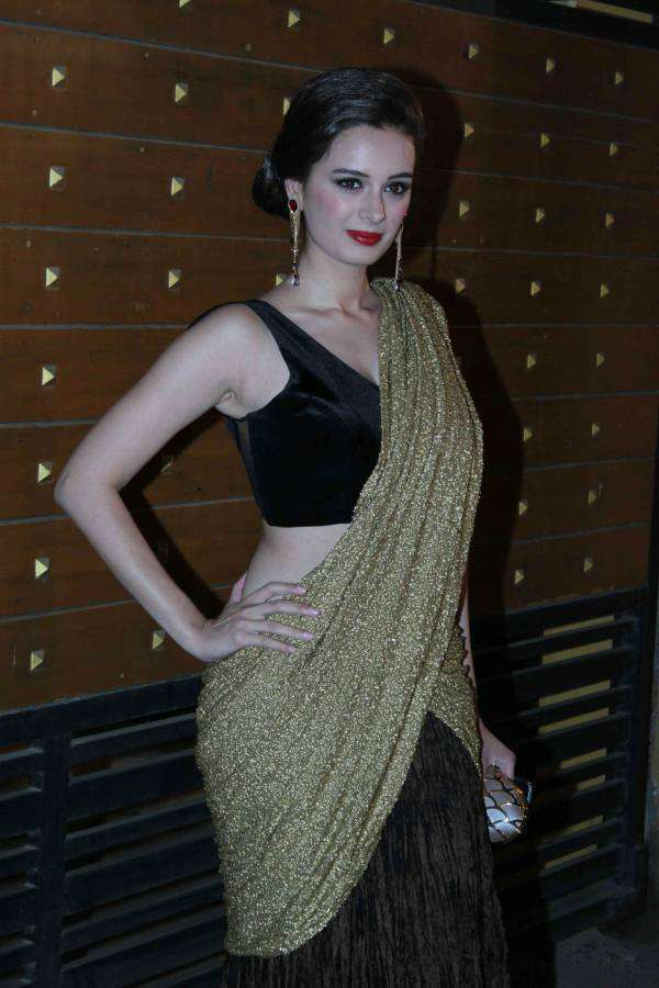 Evelyn sharma Beautiful Pics In Saree