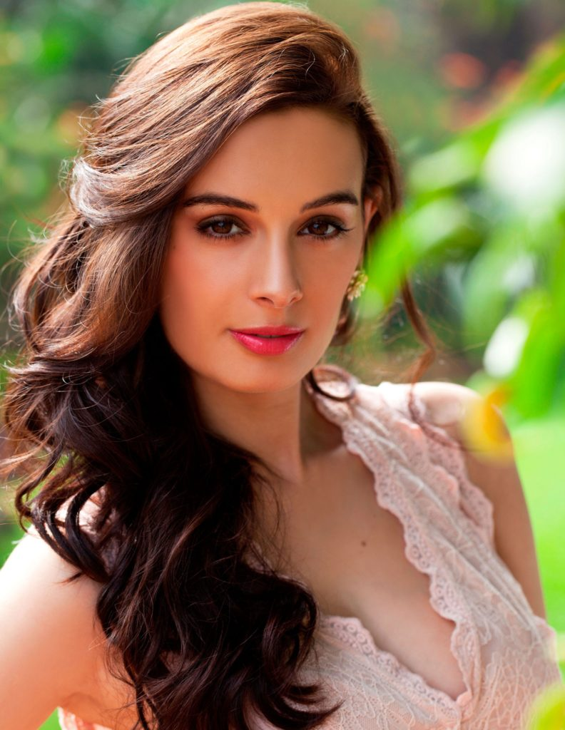 Evelyn sharma Full HD Photos