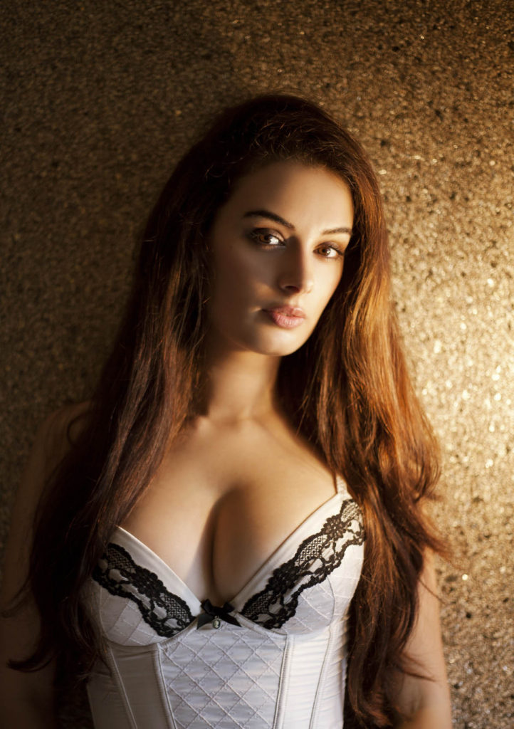 Evelyn sharma Hot & Sexy Boobs Photos