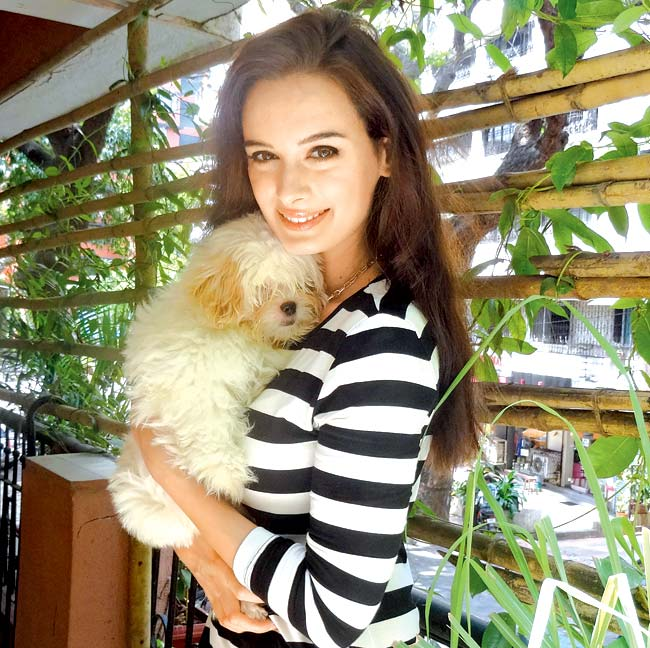 Evelyn sharma Images With His Cat
