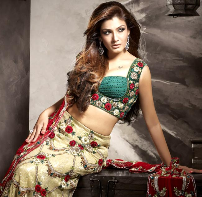 Raveena Tandon Hot Navel Images