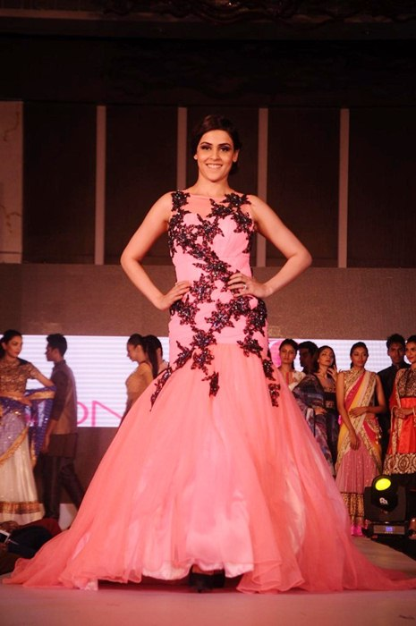 Genelia D'Souza Beautiful Pics In Gown