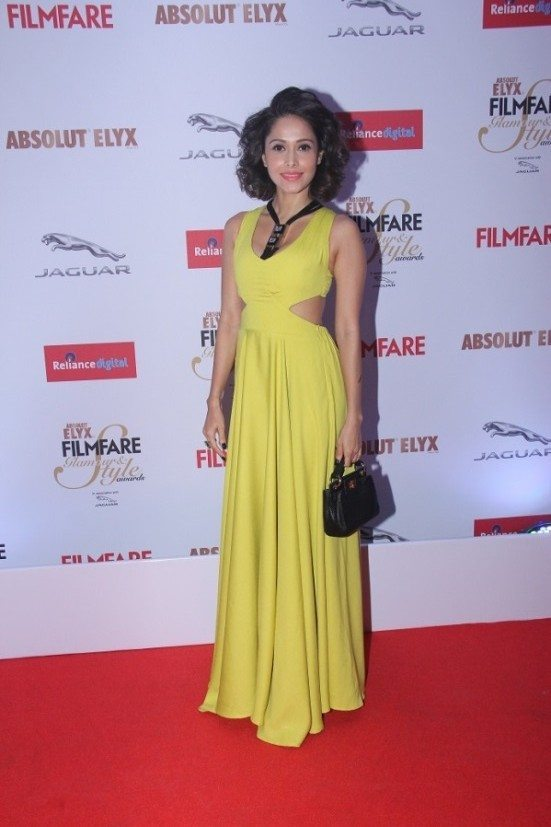 Nushrat Bharucha Hot At Award Show HD