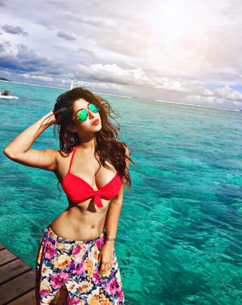 Sonarika Bhadoria Hot Boobs In Bikini Photoshoot