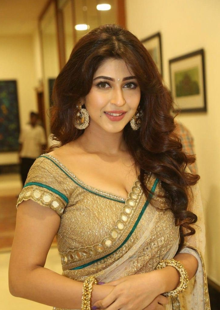 Sonarika Bhadoria Hot Photos In Saree