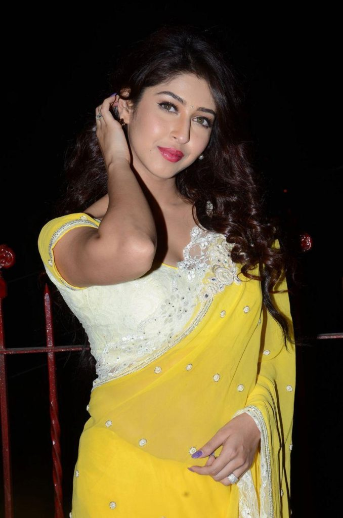 Sonarika Bhadoria Hot & Spicy Images In Saree HD