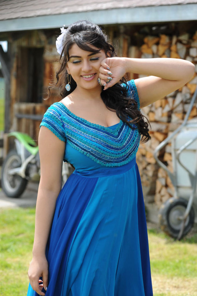 Hansika Motwani Cute Smiling Pictures