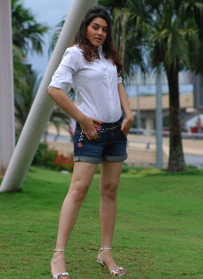 Hansika Motwani Sexy In Short Jeans Pictures