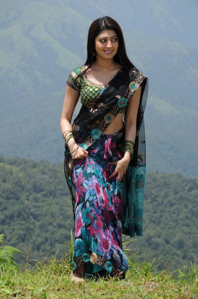 Pranitha Pics In Saree