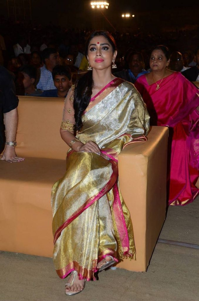 Shriya Saran In Saree Beautiful Images