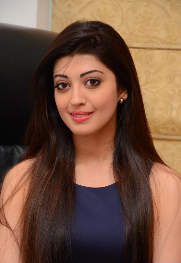 Tollywood Actress Pranitha Photos