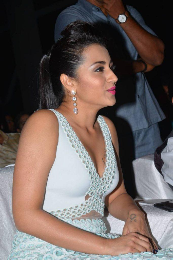 Trisha Krishnan Hot In Bikini Photos HD