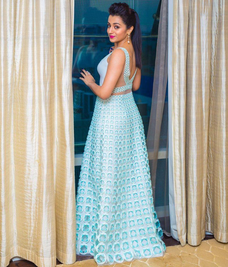 Trisha Krishnan Hot Looking Bickside Pics