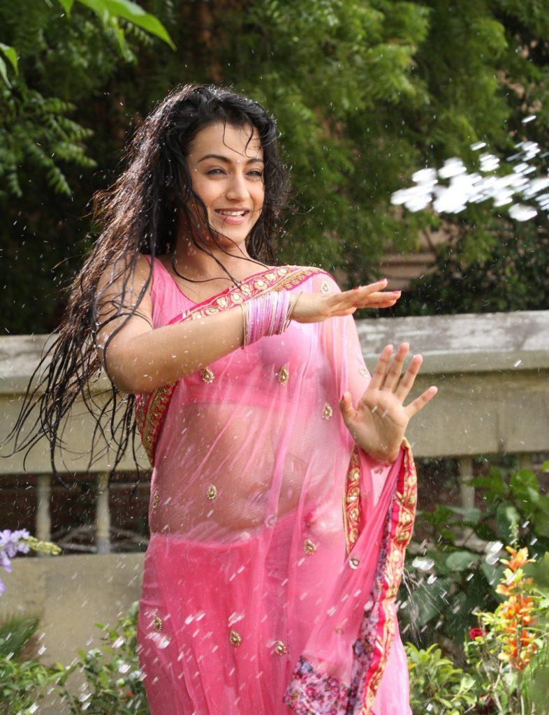 Trisha Krishnan Hot & Spicy Navel Pics