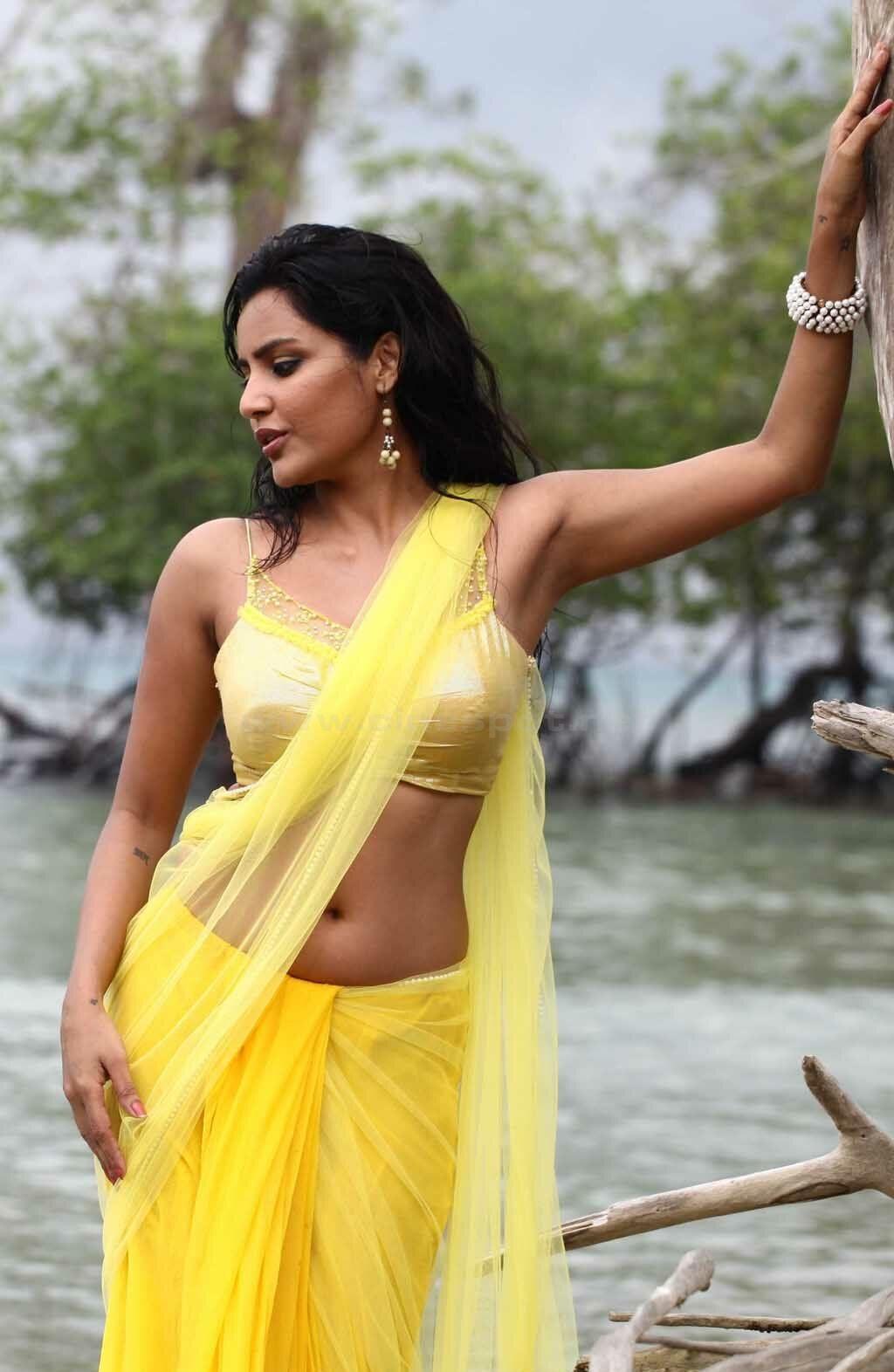 Priya Anand Hot Naval Exposing Photo Images