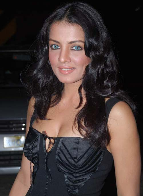 Celina Jaitley Hot Pictures