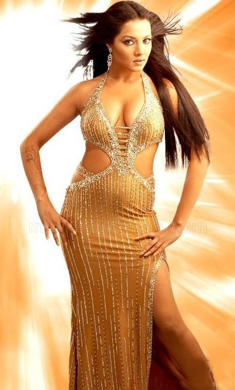 Celina Jaitley In Bikini Pics HD
