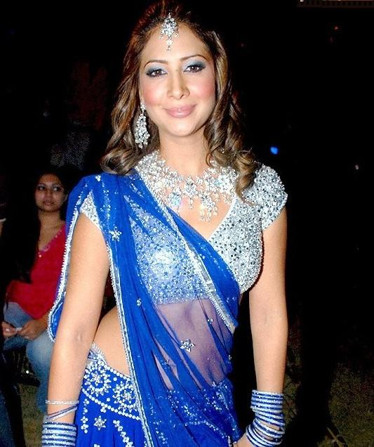 Kim Sharma Images In Saree